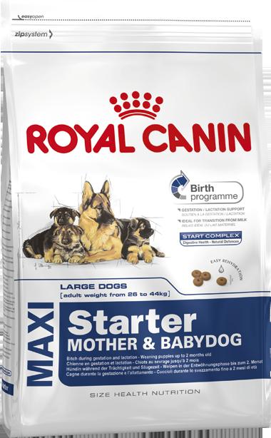 Сухой корм Royal Canin Maxi Starter для щенков до 2 месяцев крупных размеров