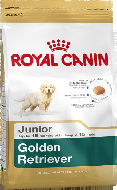 Сухой корм Royal Canin Golden Retriever Junior для щенков породы Голден-Ретривер