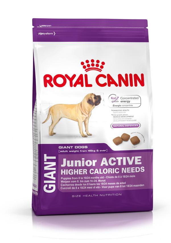 Сухой корм Royal Canin Giant Junior Active для активных щенков (8-24 мес.) гигантских размеров