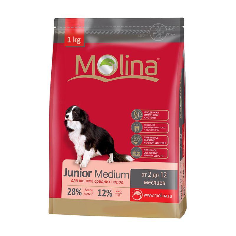 Сухой корм Molina Junior Medium для щенков средних пород
