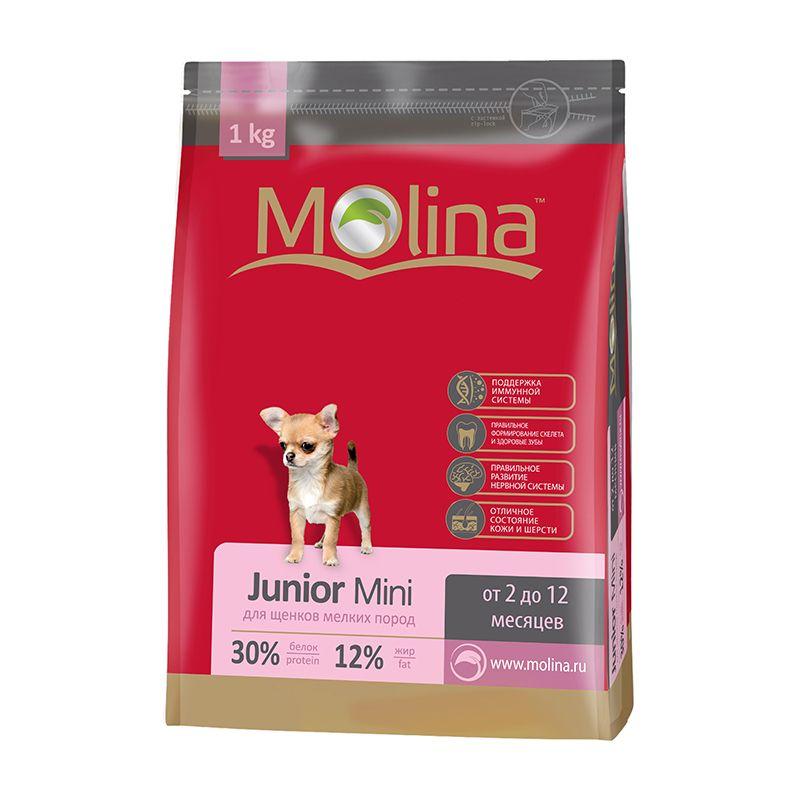 Сухой корм Molina Junior Mini для щенков мелких пород