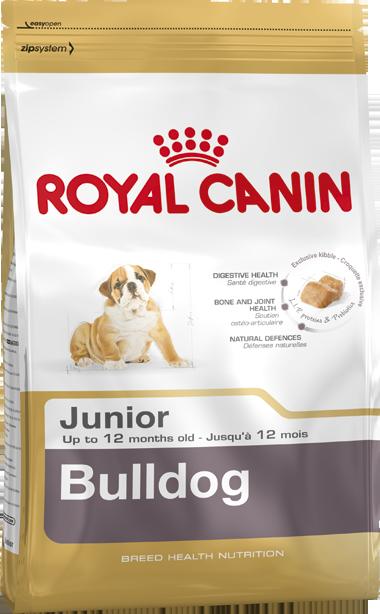 Сухой корм Royal Canin Bulldog Junior для щенков породы Бульдог