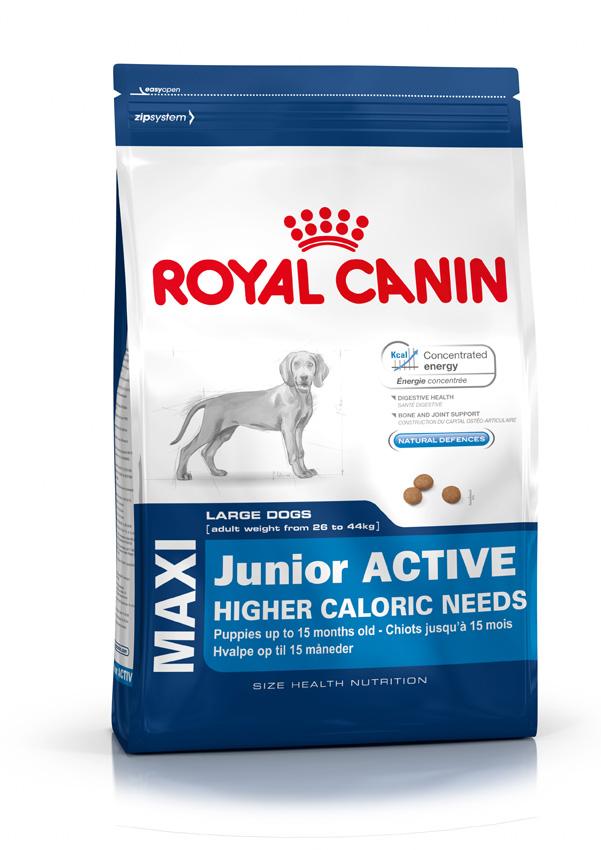 Сухой корм Royal Canin Maxi Junior Active для активных щенков (2 - 15 мес.) крупных размеров