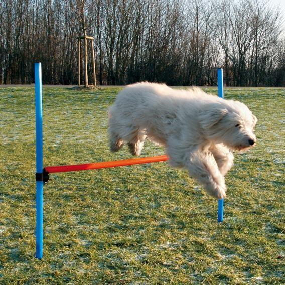 Набор для аджилити Trixie Jump