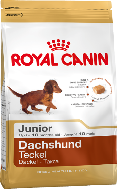 Сухой корм Royal Canin Dachshund Junior для щенков породы Такса