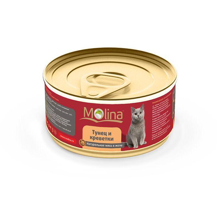 Консервы Molina в желе для кошек