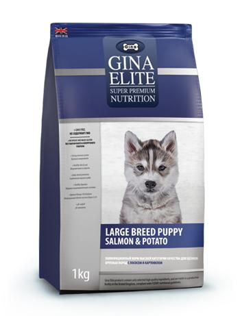 GINA Elite Large Puppy Salmon&Potato корм для щенков крупных пород