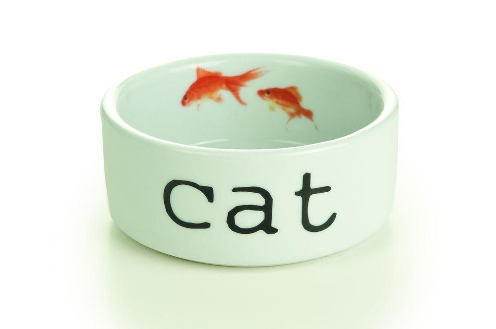 Миска I.P.T.S. Snapshot для кошек керамическая