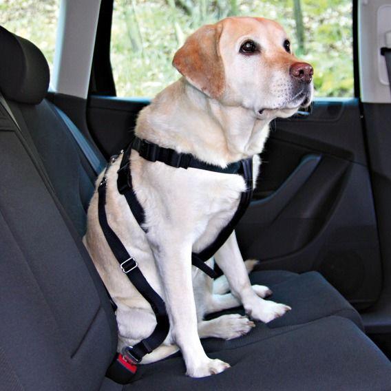 Автомобильный ремень безопасности Trixie для собак
