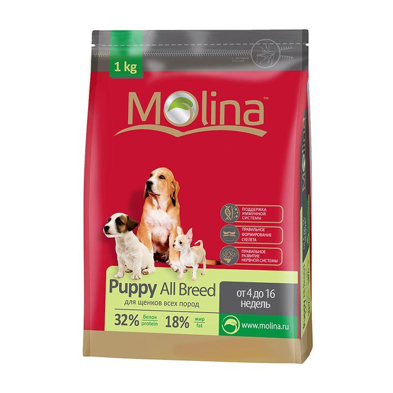 Сухой корм Molina Puppy All Breed для щенков всех пород