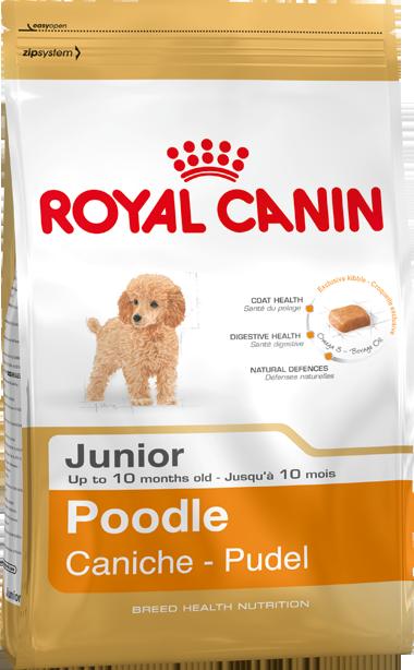 Сухой корм Royal Canin Poodle Junior для щенков породы Пудель