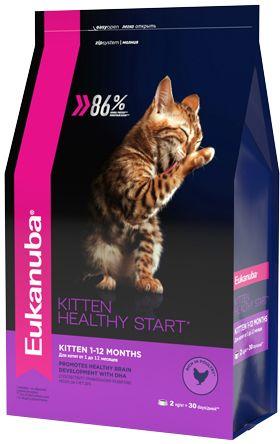 Сухой корм Eukanuba Kitten Healthy Start с домашней птицей для котят