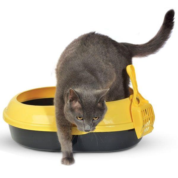 Туалет Triol P541-A овальный с бортом для кошек