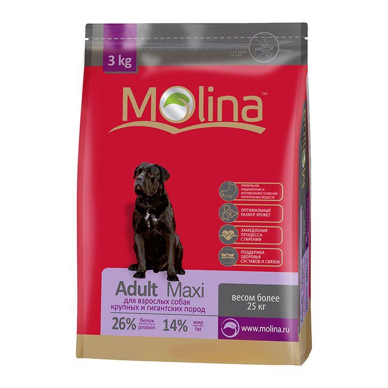 Сухой корм Molina Adult Maxi для взрослых собак крупных пород