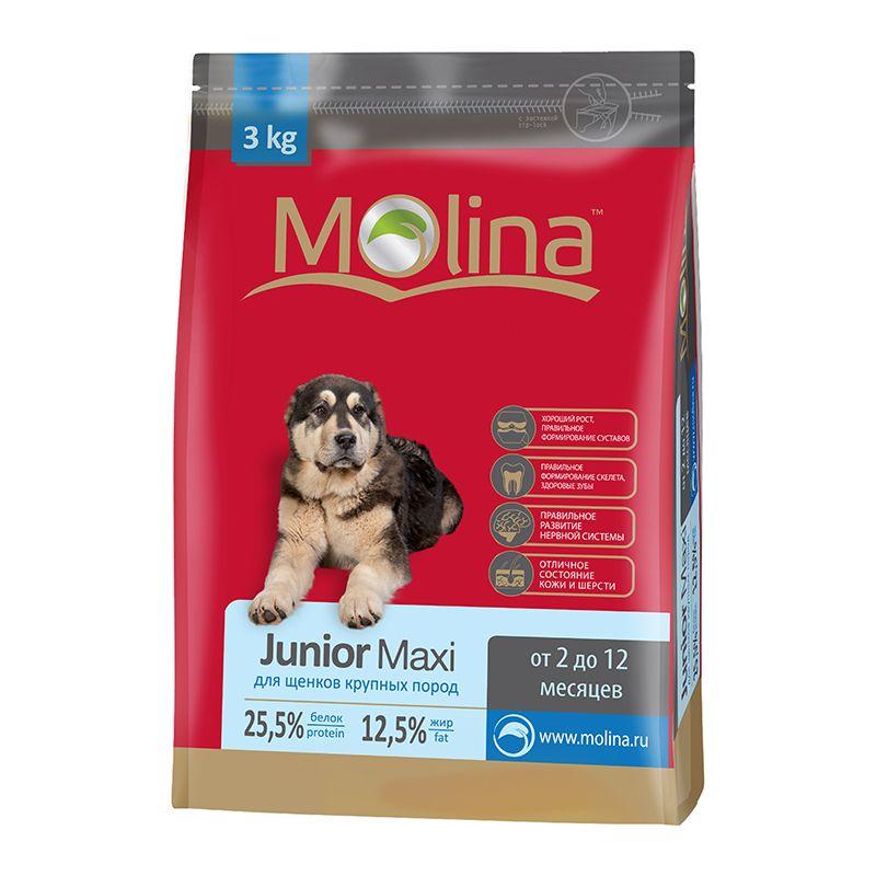 Сухой корм Molina Junior Maxi для щенков крупных пород